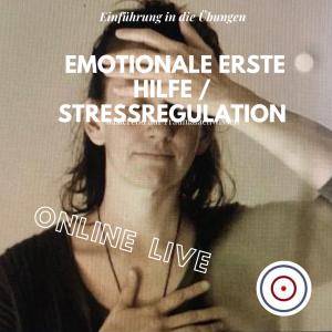 Live-Online-Workshop: Einführung in die Übungen zur Emotionalen Ersten Hilfe / Stressregulation nach Kati Bohnet