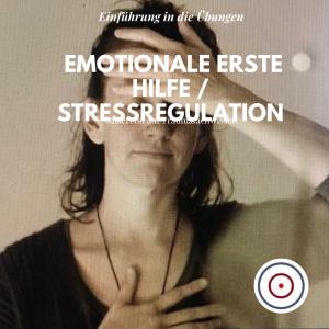 Emotionale Erste Hilfe / Stressregulation