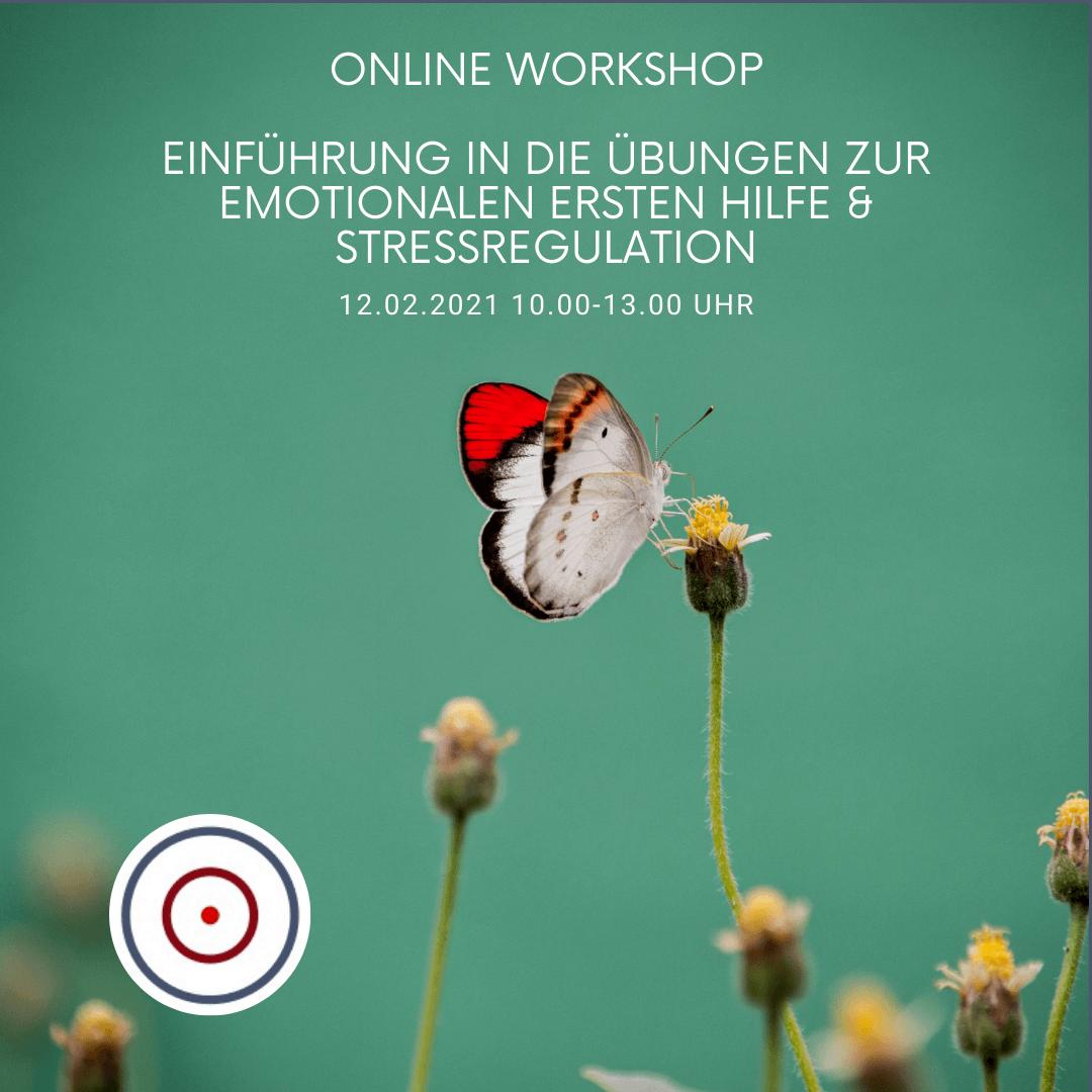 Workshop: Einführung in die Übungen zur Emotionalen Ersten Hilfe / Stressregulation am 16.03.2021