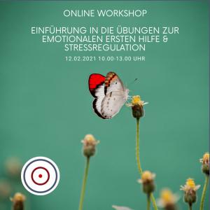 Workshop: Einführung in die Übungen zur Emotionalen Ersten Hilfe / Stressregulation am 12.02.2021